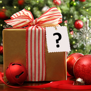 Picture of a wrapped present with bow and a big question mark on the tag